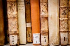 Alte Manuskripte Lizenzfreies Stockbild