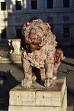 Alte Marmorlöwestatue in Venedig Stockfotografie