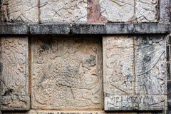 Alte Mayawandgemälde auf der Plattform Eagless und des Jagua Lizenzfreie Stockbilder