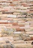 Alte MehrfarbenDachplatten bedeckt mit Moos und Algen Stockbilder