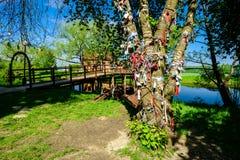 Alte Metallverschlüsse und -bänder auf dem Baum nahe dem See Symbol von Lizenzfreie Stockbilder