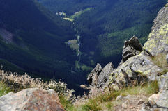 Alte montagne Fotografia Stock Libera da Diritti