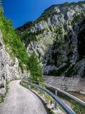 Alte montagne Austria Fotografia Stock Libera da Diritti
