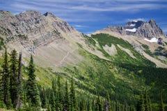 Alte montagne con le foreste Fotografia Stock Libera da Diritti