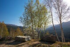 Alte montagne corse di Niolu nella primavera Fotografie Stock