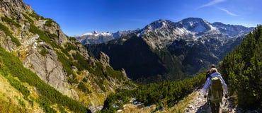 Alte montagne di Tatra Fotografia Stock Libera da Diritti