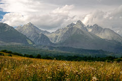 Alte montagne di Tatra, Slovacchia Immagini Stock Libere da Diritti