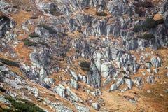 Alte montagne di tatras, Slovacchia Immagine Stock Libera da Diritti