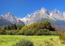 Alte montagne in estate, Slovacchia di Tatra Fotografie Stock Libere da Diritti