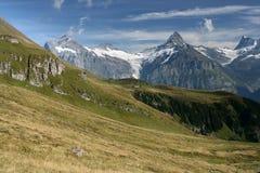 Alte montagne nelle alpi svizzere Immagine Stock Libera da Diritti