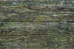Alte moosige hölzerne Beschaffenheit Rustikale Art der Weinlese Natürliche Oberfläche, Hintergrund und Tapete Stockfotografie