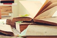 Alte Nahaufnahme des offenen Buches mit Herbstahornblättern auf dem Tisch Stockbilder