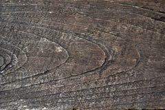 Alte Nahaufnahme hölzern Beschaffenheit im Abend zeigen Lizenzfreie Stockbilder