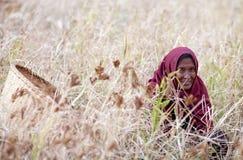 Alte nepalesische Frau mit Korb Lizenzfreie Stockfotos