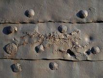 Alte Niete auf rostigen Metallplatten Stockbilder