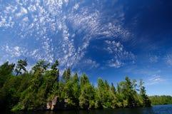 Alte nubi nel legno del nord Immagine Stock