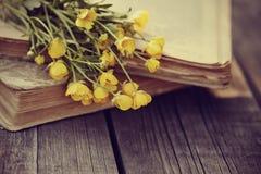 Alte offene Bücher und Butterblumeen auf einem Holztisch Stockbild