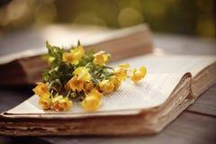 Alte offene Bücher und gelbe Butterblumeen Lizenzfreie Stockfotos