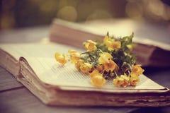 Alte offene Bücher und gelbe Butterblumeen Stockbilder
