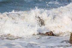 Alte onde di Oceano Indiano Immagine Stock Libera da Diritti