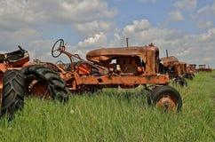 Alte orange Traktoren in Folge Stockfotografie