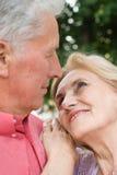 Alte Paare an der Natur Stockbild