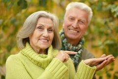 Alte Paare, die am Herbstpark aufwerfen Lizenzfreies Stockfoto