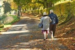Alte Paare im Park Lizenzfreie Stockfotos