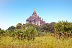 Alte Pagode in der Landschaft von Bagan auf Myanmar Stockfoto
