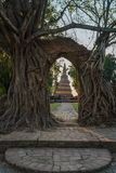 Alte alte Pagode an Wat Phra Ngam Buddhist-Tempel Stockbilder