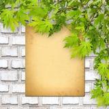 Alte Papierauflistung auf weißer Backsteinmauer mit hellem Laub Lizenzfreies Stockfoto