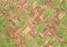 Alte Pflastersteine des roten Backsteins mit dem Gras, das entlang wächst Stockfotos