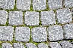 Alte Pflasterung des grauen Steins mit Moos Stockbild