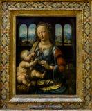 Alte Pinakothek - Leonardo Da Vinci ` s Virgin και παιδί Στοκ φωτογραφία με δικαίωμα ελεύθερης χρήσης