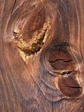Alte Planke Lizenzfreie Stockbilder