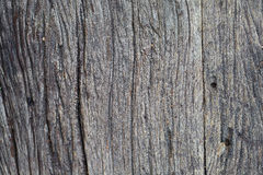 Alte Planke hölzern Stockfotos