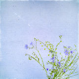 Alte Postkarte RsVintage mit blauem flowe des Flachses Lizenzfreie Stockfotos