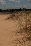 Alte punte nel deserto Fotografie Stock Libere da Diritti