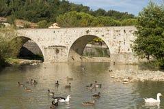 Alte römische Brücke in Toskana Lizenzfreie Stockfotos