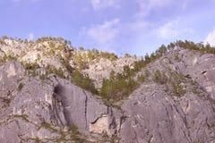 Alte rocce grige Alberi verdi Cielo blu Fotografie Stock Libere da Diritti