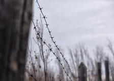Alte, rostige Laterne auf einem Zaun mit Stacheldraht Lizenzfreie Stockfotos