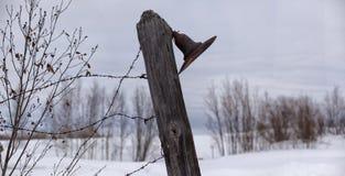 Alte, rostige Laterne auf einem Zaun mit Stacheldraht Lizenzfreies Stockfoto
