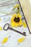 Alte rostige Taste und Sonnenblume Lizenzfreie Stockfotografie