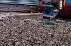 Alte rostige verlassene Schiffe, die auf dem Ufer sitzen Stockbild