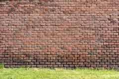Alte rot-orange Backsteinmauer und ein Rasen 2 Lizenzfreie Stockfotografie