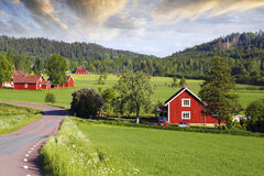 Alte rote Bauernhöfe in einer grünen Landschaft Stockfoto
