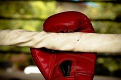 Alte rote Boxhandschuhe Lizenzfreies Stockfoto