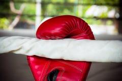 Alte rote Boxhandschuhe Stockbild
