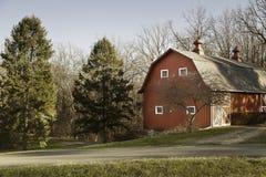 Alte rote Scheune auf dem Gebiet mit Bäumen Stockfotografie