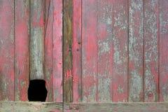 Alte rote Tür mit Loch Stockfotografie